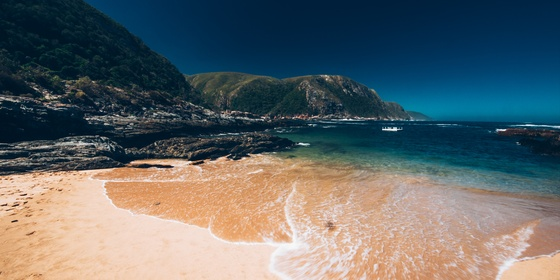 Garden Route Adventure Tour from Port Elizabeth